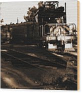 Boy On The Tracks Wood Print