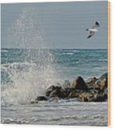 Boynton Beach High Tide Wood Print