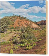 Bracchina Gorge Flinders Ranges South Australia Wood Print