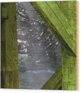 Braced With Moss Wood Print