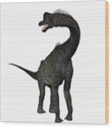 Brachiosaurus Wood Print