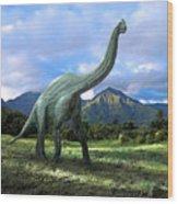 Brachiosaurus In Meadow Wood Print by Frank Wilson