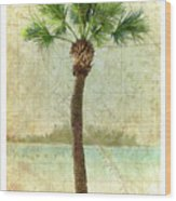Bradenton Palm Wood Print