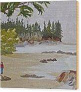 Brady Beach #2 Wood Print
