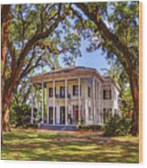 Bragg Mitchell House In Mobile Alabama Wood Print