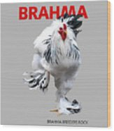 Brahma Breeders Rock Red Wood Print