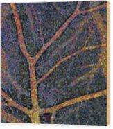 Brain Tissue Blood Supply Wood Print
