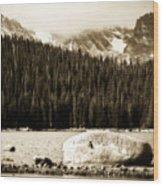 Brainard Lake Wood Print