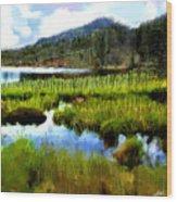 Brainard Lake Rocky Mountain National Park Wood Print