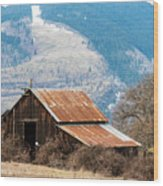 Bramble Bound Barn Wood Print