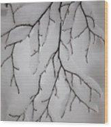 Branch Wood Print by Gabriela Insuratelu
