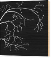 Branch Silhouette Wood Print