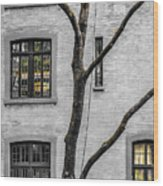 Branches And Windows Wood Print