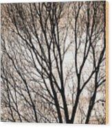 Branches Silhouettes Mono Tone Wood Print