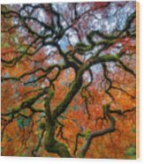 Branching Out In Autumn Wood Print