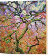 Branching Out In Autumn Neon Wood Print