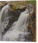 Brandywine Falls II Wood Print