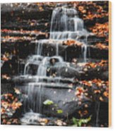 Brandywine Falls In Autumn Wood Print