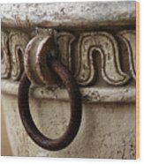 Brass Ring Rusted Wood Print