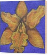 Brassolaeliocattleya Hybrid Wood Print