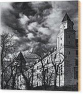 Bratislava Castle Wood Print