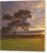 Bratley View Tree Wood Print