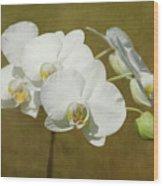 Brazen Beauty Wood Print