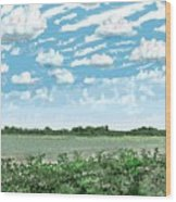 Brazoria County Field Wood Print