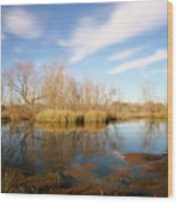 Brazos Bend Winter Bliss Wood Print