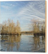 Brazos Bend Winter Reflections Wood Print