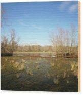 Brazos Bend Winter Wetland Wood Print