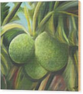 Breadfruits St Kitts Wood Print