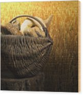 Breads And Wheat Cereal Crops Wood Print