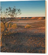 Breakaway Dawn Wood Print