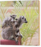 Breakfast Guests Wood Print