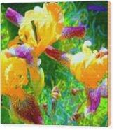 Breakfast Time Oj Irises Wood Print
