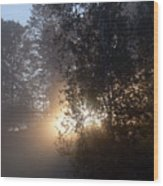 Breath Of Sunshine Wood Print