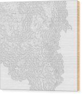 Breckenridge Mountain Art Print Contour Map Of Breckenridge Moun Wood Print