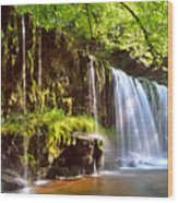 Brecon Beacons National Park 1 Wood Print