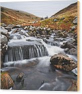 Brecon Beacons National Park 2 Wood Print