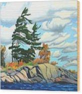 Breezy Day Georgian Bay Wood Print