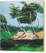 Breezy Wood Print