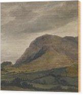 Breidden Hill In The Welsh Borders Wood Print
