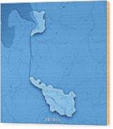 Bremen Bundesland Germany 3d Render Topographic Map Blue Border Wood Print