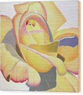 Brenda's Rose Wood Print