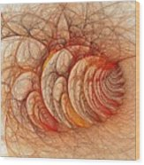 Briar Patch Again-3 Wood Print