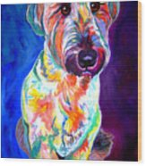 Briard - Albert Wood Print by Alicia VanNoy Call