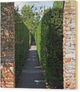 Brick Arch Wood Print