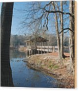 Brick Pond Park Wood Print