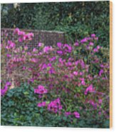 Brick Wall And Azalea Wood Print